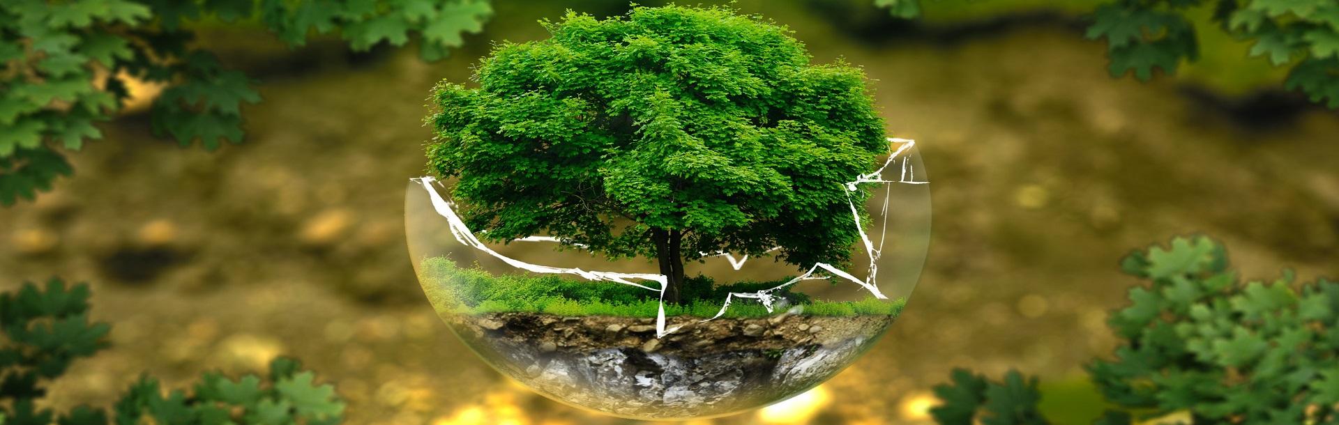 ACEPI e la Finanza Sostenibile, ESG