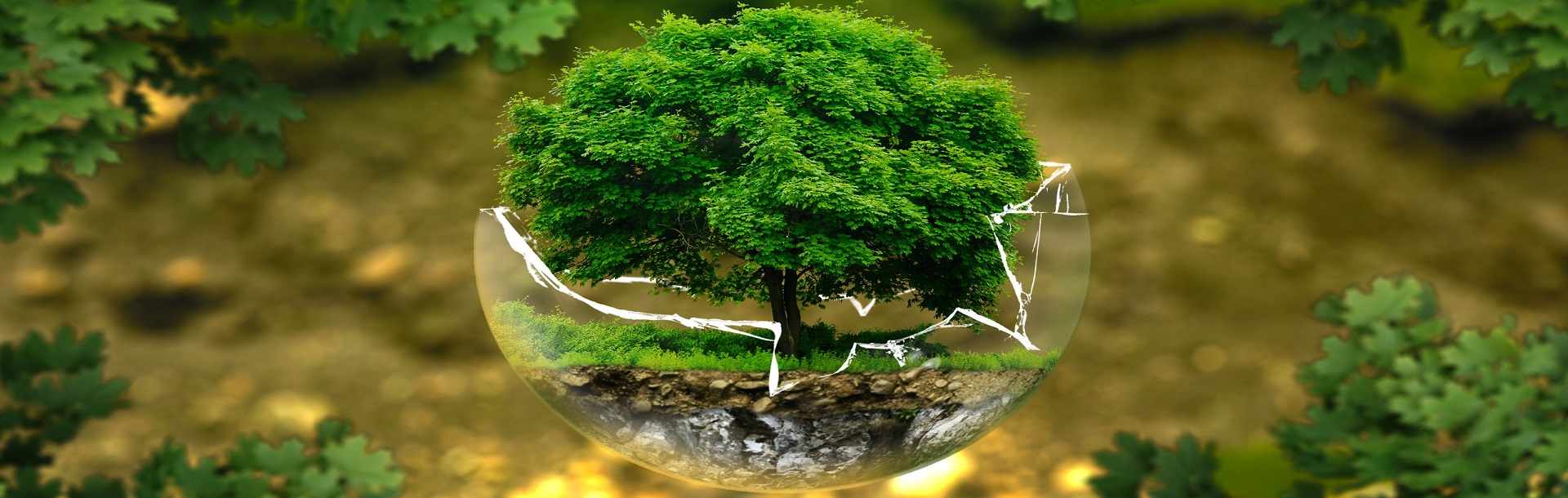 ACEPI and Sustainable Finance, ESG